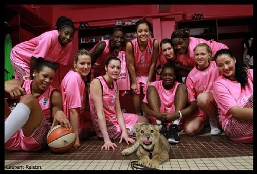 Arras players with the lion  © Laurent Raison